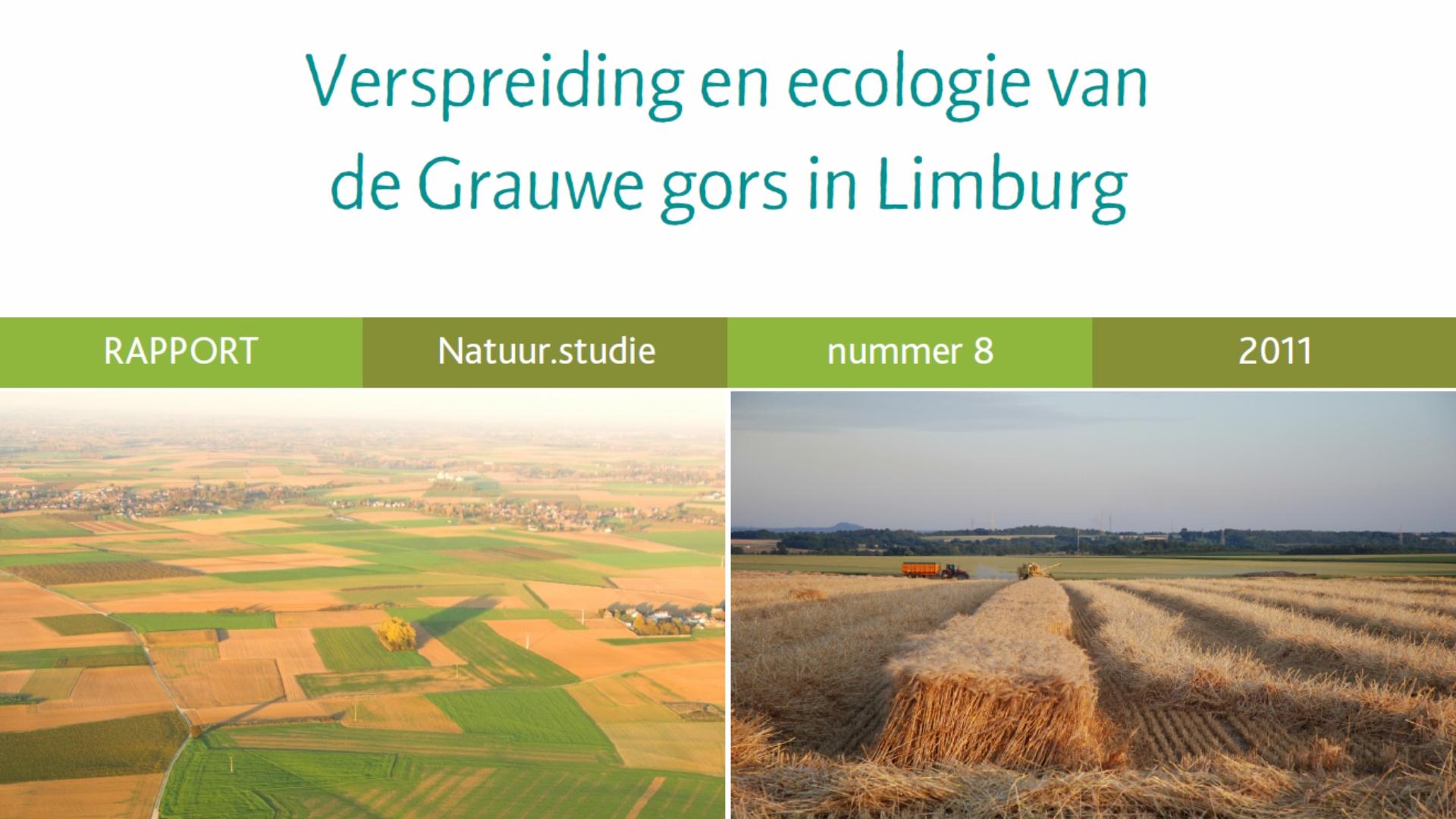 De Grauwe gors in Limburg (2011)