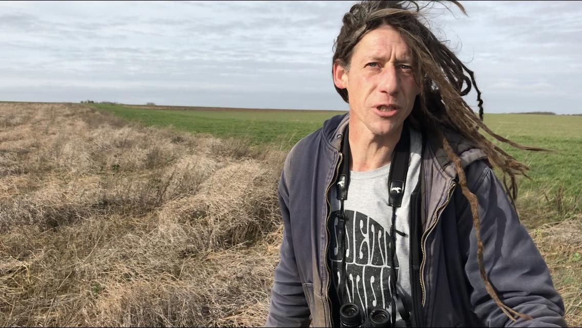Bijvoederen grauwe gors met Robin Guelinckx